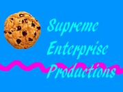 1990 Supreme Enterprise Studios Logo Take 17