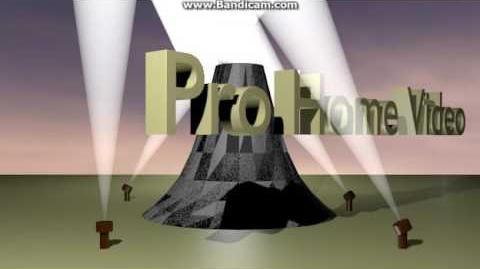 (Fake) Pro Home Video (2010-Presents)