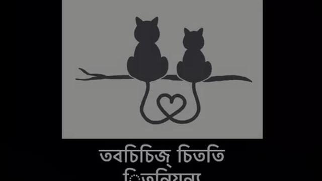 Kitty Love Productions (Bangladesh)