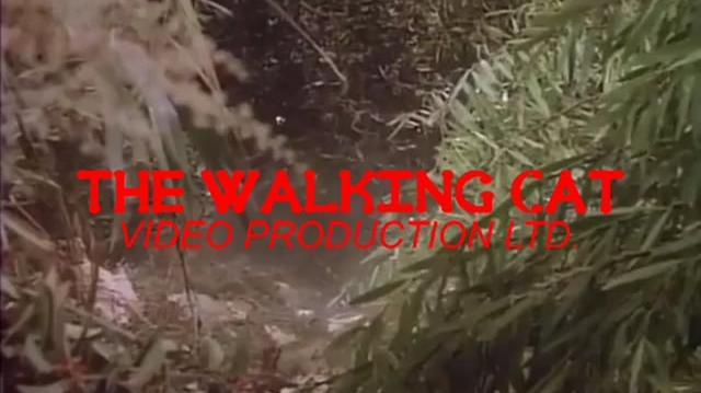 (FAKE) The Walking Cat Video Production Ltd Logo (1990's-2005)