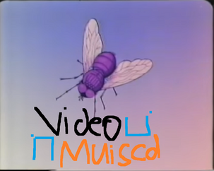 Video Muisca