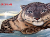 Leopard Films (India)