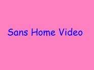 Prototype 1999 Sans Home Video Logo