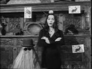 60.Cat.Addams 037