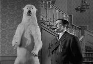 Af bear policy