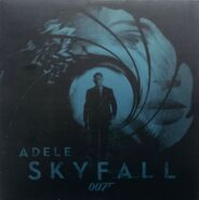 Skyfall Vinyl 1