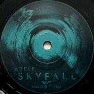 Skyfall Vinyl 4