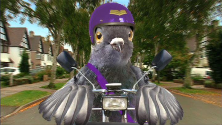 Funky Pigeon | The Ad Mascot Wiki | Fandom