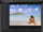 Adobe Photoshop Express Editor in browser.png
