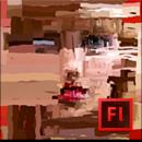 Adobe Flash Professional CS6 totem