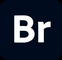 Adobe Bridge CC icon 2020