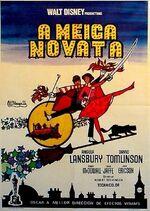 A-meiga-novata-galego