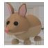 Bandicoot Pet