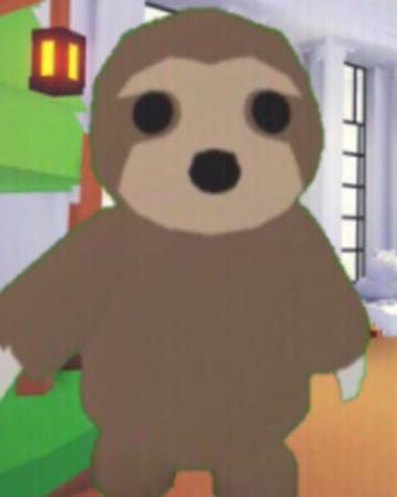 Sloth Adopt Me Wiki Fandom