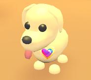 AM Bi Pride Pin on Dog