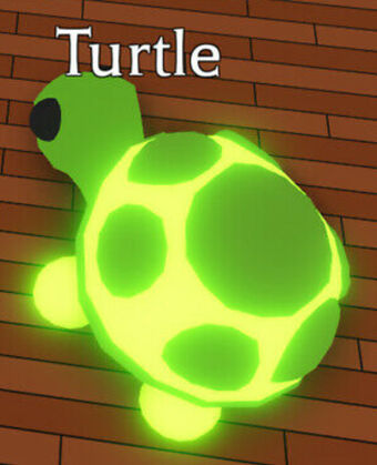 Turtle Adopt Me Wiki Fandom