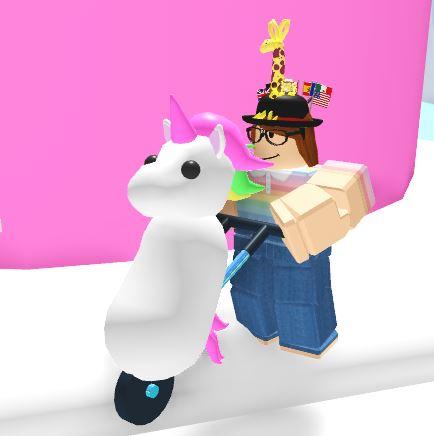 Unicorn Stroller Adopt Me Wiki Fandom