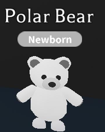 Polar Bear Adopt Me Wiki Fandom
