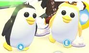 Pinguinoyotrodorado
