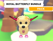 AM Royal Butterfly Bundle