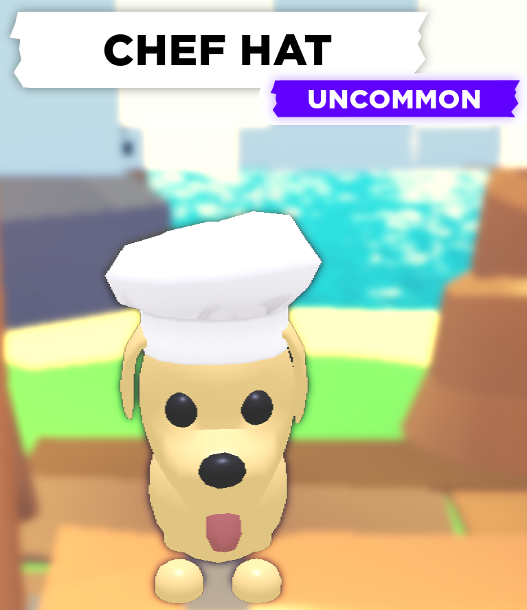 Chef Hat Adopt Me Wiki Fandom