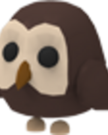 Owl Adopt Me Wiki Fandom