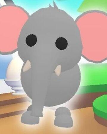 Elephant Adopt Me Wiki Fandom