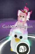 Pinguinodorado meganeon