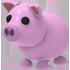 Pig Pet