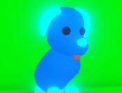 Blue dog 4