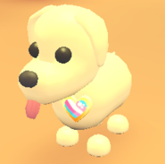 AM Trans Pin on Dog