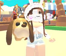Dog leash adopt me