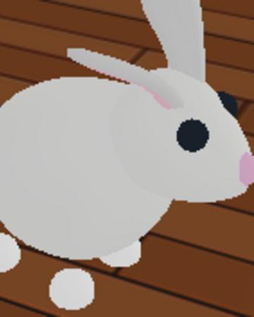 Rabbit Adopt Me Wiki Fandom