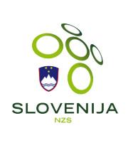 Slovenia-national-soccer-team-logo