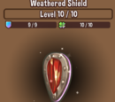 Weathered Shield
