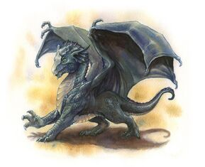 Nimbus (Silver Dragon Wyrmling)