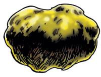 Garl Glittergold