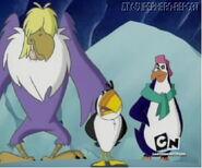 PENGIUNS BIRDS