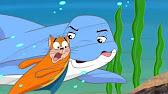 Dooly and Streaky Catfish