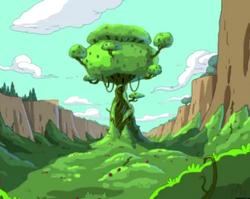 Wildberry Kingdom