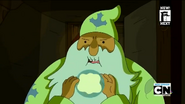 S4 E24 Forest Wizard
