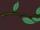 Пальмовая ветка