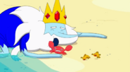 S5 e22 Ice King washes up on shore