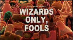 Titlecard S5E26 Wizards Only, Fools