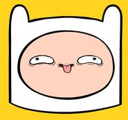 Finnpervyface