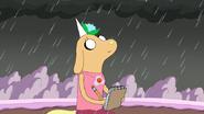 S7e16 viola in the rain