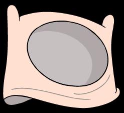 CappelloFinn