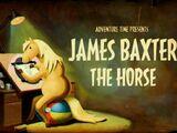 James Baxter le cheval