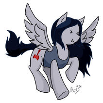 MlpMARCY