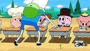 Pig11